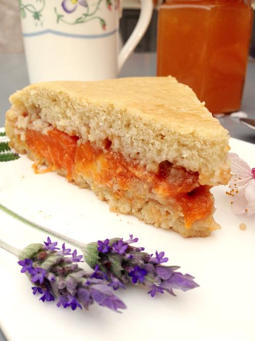 gâteau moelleux aux abricots et crème pâtissière vegan végétalien