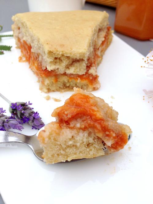 Gâteau moelleux aux abricots et crème pâtissière végétalien vegan